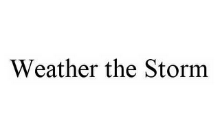 mark for WEATHER THE STORM, trademark #78538766