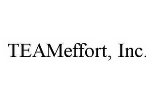mark for TEAMEFFORT, INC., trademark #78547542