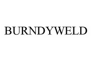 mark for BURNDYWELD, trademark #78565267