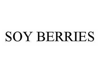 mark for SOY BERRIES, trademark #78589552
