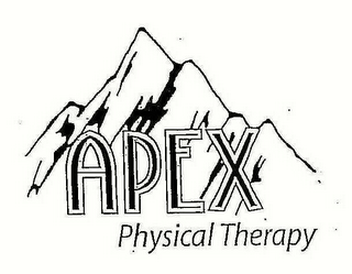 mark for APEX PHYSICAL THERAPY, trademark #78609954
