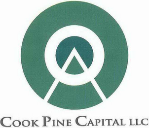 mark for COOK PINE CAPITAL LLC, trademark #78624821