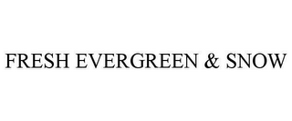 mark for FRESH EVERGREEN & SNOW, trademark #78628888