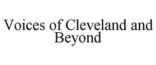 mark for VOICES OF CLEVELAND AND BEYOND, trademark #78677240