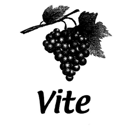 mark for VITE, trademark #78685604