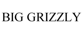 mark for BIG GRIZZLY, trademark #78696075