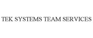 mark for TEK SYSTEMS TEAM SERVICES, trademark #78704290