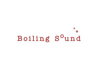 mark for BOILING SOUND, trademark #78721536
