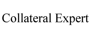 mark for COLLATERAL EXPERT, trademark #78731542
