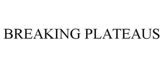 mark for BREAKING PLATEAUS, trademark #78780760