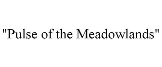 "mark for ""PULSE OF THE MEADOWLANDS"", trademark #78781733"