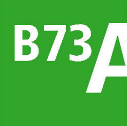 mark for B73A, trademark #78787496
