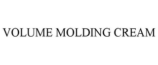 mark for VOLUME MOLDING CREAM, trademark #78839413