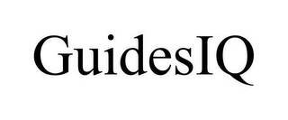mark for GUIDESIQ, trademark #78856301