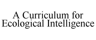 mark for A CURRICULUM FOR ECOLOGICAL INTELLIGENCE, trademark #78861204