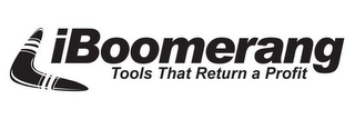 mark for IBOOMERANG TOOLS THAT RETURN A PROFIT, trademark #78887460