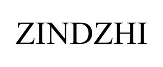 mark for ZINDZHI, trademark #78899539