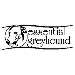 mark for ESSENTIAL GREYHOUND, trademark #78924352