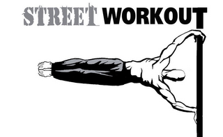 mark for STREET WORKOUT, trademark #79105265