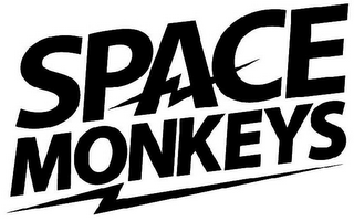 mark for SPACE MONKEYS, trademark #79109257