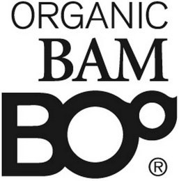 mark for ORGANIC BAM BOO, trademark #79120240