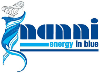 mark for NANNI ENERGY IN BLUE, trademark #79129447