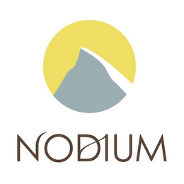 mark for NODIUM, trademark #85022076