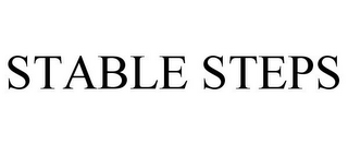 mark for STABLE STEPS, trademark #85029466