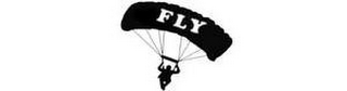 mark for FLY, trademark #85030021