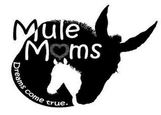 mark for MULE MOMS DREAMS COME TRUE., trademark #85050231