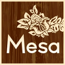 mark for MESA, trademark #85070035
