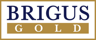 mark for BRIGUS GOLD, trademark #85080560