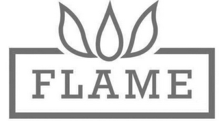 mark for FLAME, trademark #85099771