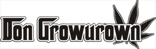 mark for DON GROWUROWN, trademark #85127353
