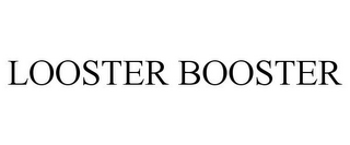 mark for LOOSTER BOOSTER, trademark #85137407