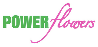 mark for POWER FLOWERS, trademark #85142701