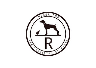 mark for R RINER DOG VIR PERCEPTUM EX CANIS, trademark #85168938