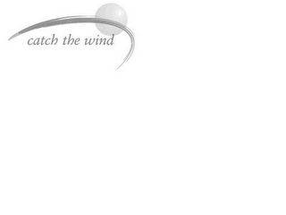 mark for CATCH THE WIND, trademark #85187262