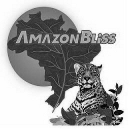 mark for AMAZON BLISS, trademark #85242853