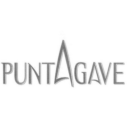 mark for PUNTAGAVE, trademark #85246204