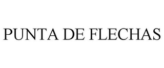 mark for PUNTA DE FLECHAS, trademark #85281227