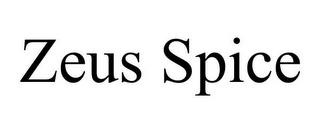 mark for ZEUS SPICE, trademark #85316778