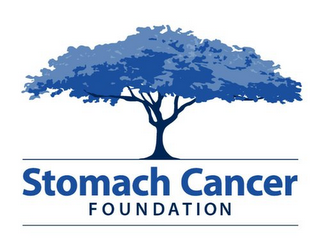mark for STOMACH CANCER FOUNDATION, trademark #85347476