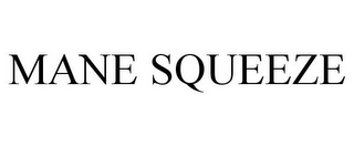 mark for MANE SQUEEZE, trademark #85360242
