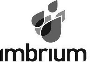 mark for IMBRIUM, trademark #85360561