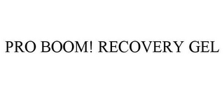 mark for PRO BOOM! RECOVERY GEL, trademark #85363359