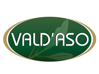 mark for VALD'ASO, trademark #85367286