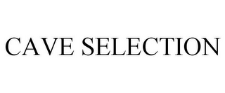mark for CAVE SELECTION, trademark #85380999