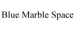 mark for BLUE MARBLE SPACE, trademark #85417049