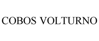 mark for COBOS VOLTURNO, trademark #85417726